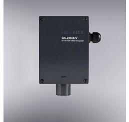 Detektor KISEONIKA (0-25%)  u Ex-izvedbi GS-220.B.V.03-70