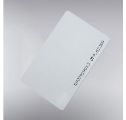 RFID EM 4100 plastična kartica 125Khz